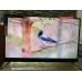 Телевизор BBK 50LEX8161UTS2C 4K Ultra HD на Android, 2 пульта, HDR, премиальная аудио система в Старом Крыму фото 9